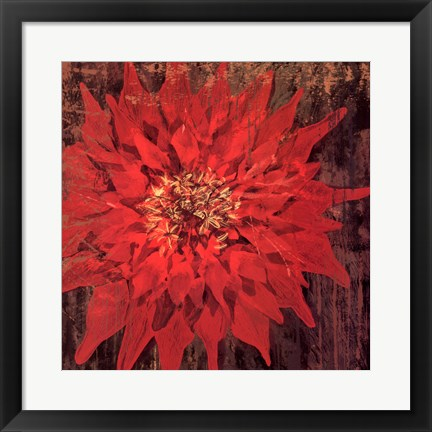 Framed Floral Frenzy Red IV - square Print