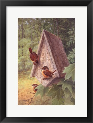 Framed Bird House Print