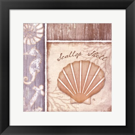 Framed Scallop Shell Print