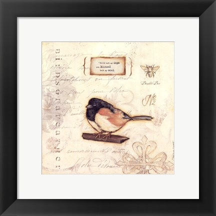 Framed Color Bird II Print