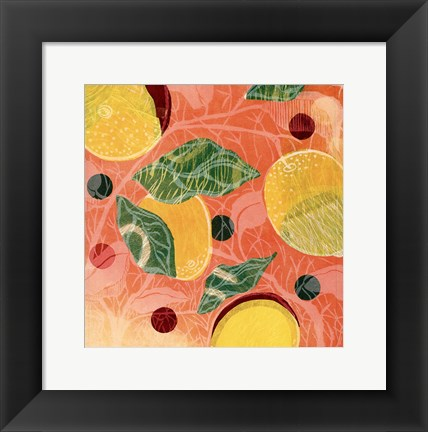 Framed Citrus Limon I (SM.) Print