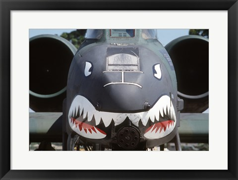Framed Flying Tigers II Print