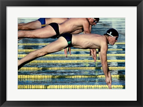 Framed Side profile of three swimmers jumping into a swimming pool Print