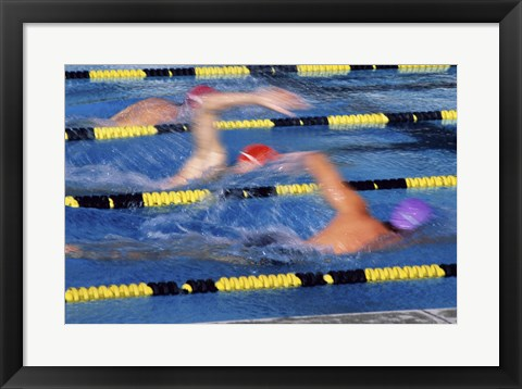 Framed Rear view of three swimmers racing in a swimming pool Print