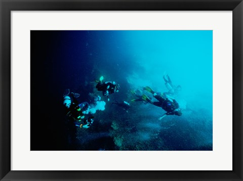 Framed Five scuba divers swimming underwater, Blue Hole, Belize Print