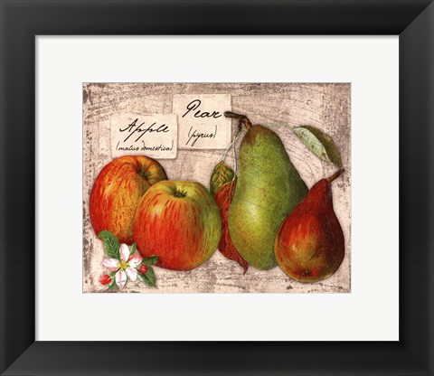 Framed Fresco Fruit X Print