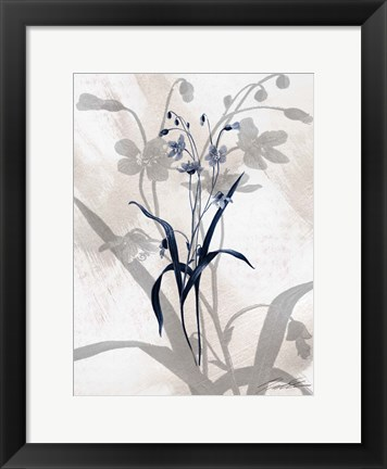 Framed Indigo Bloom III Print