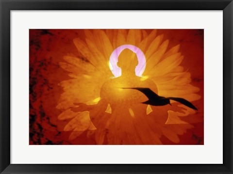 Framed Image of a flower and bird superimposed on a person meditating Print