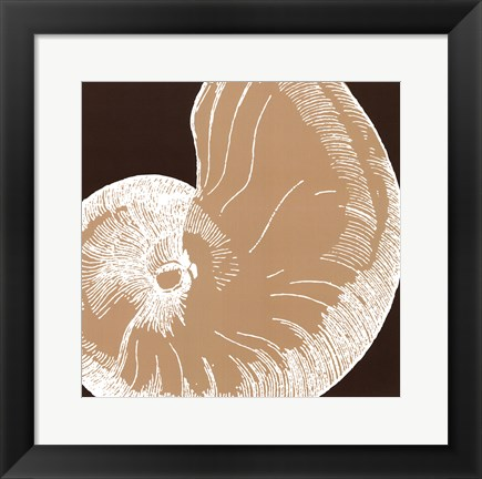 Framed Natural Shell II - mini Print