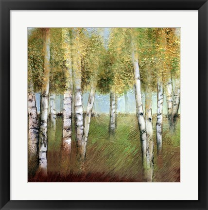 Framed BIRCH WOODS II Print