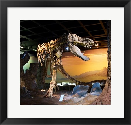 Framed Tyrannosaurus Fossil Reproduction Print