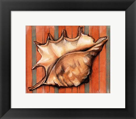 Framed Shell on Stripes II Print