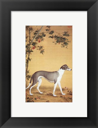 Framed Greyhound by Bamboo Print