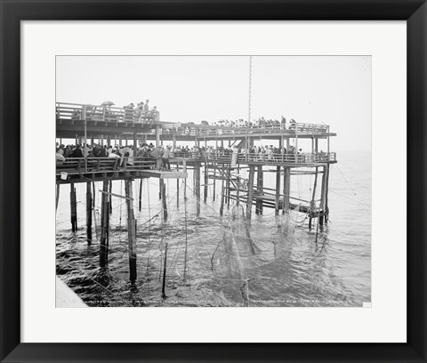 Framed Hauling the Nets, Young's Pier, Atlantic City, NJ Print