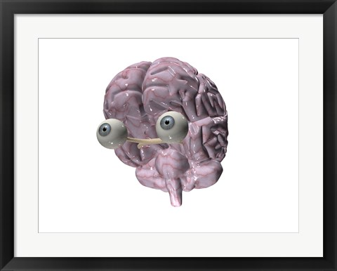 Framed Close-up of a human brain with eye balls Print