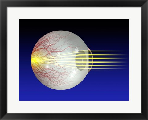 Framed Close-up of the human eyeball Print