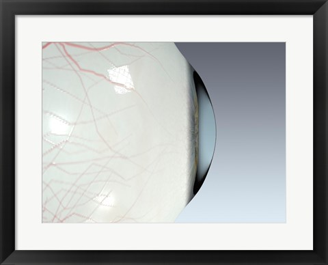 Framed Close-up of the human eyeball side view Print