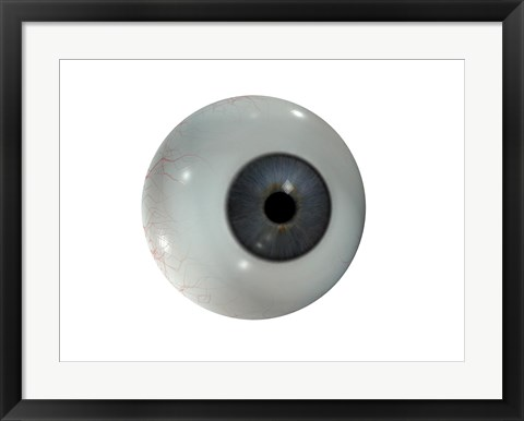 Framed Close-up of the human eyeball frontal view Print