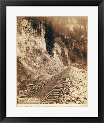 Framed Grand Canyon Elk Canyon on Black Hills Print