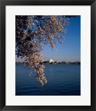 Framed Jefferson Memorial Washington, D.C. USA Print
