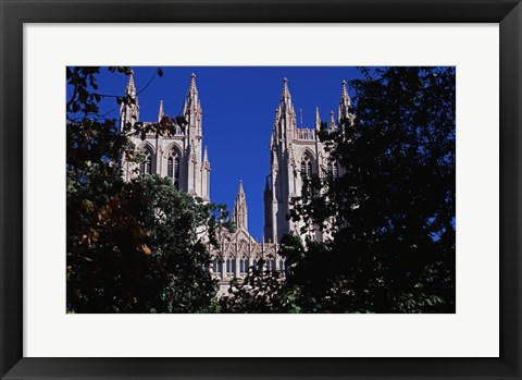 Framed Trees in front of a cathedral, Washington National Cathedral, Washington DC, USA Print
