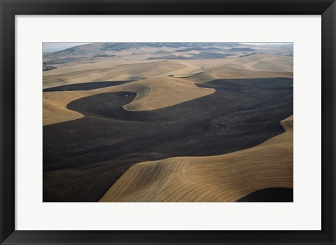 Framed Aerial view of a cultivated landscape, Washington State, USA Print