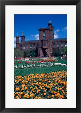 Framed Formal garden in front of a museum, Smithsonian Institution, Washington DC, USA Print