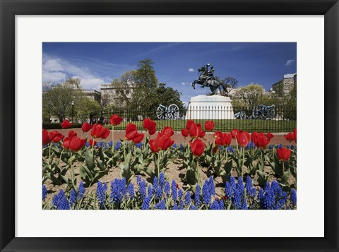 Framed Andrew Jackson Statue, Washington D.C., USA Print