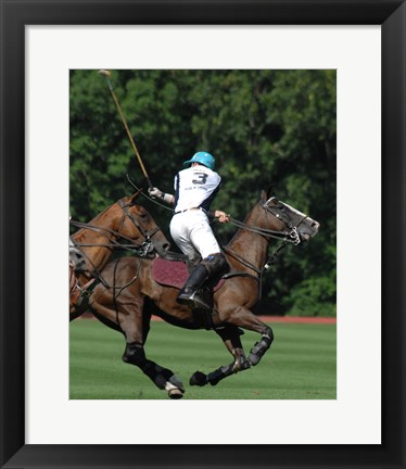 Framed Polo nearside back Print