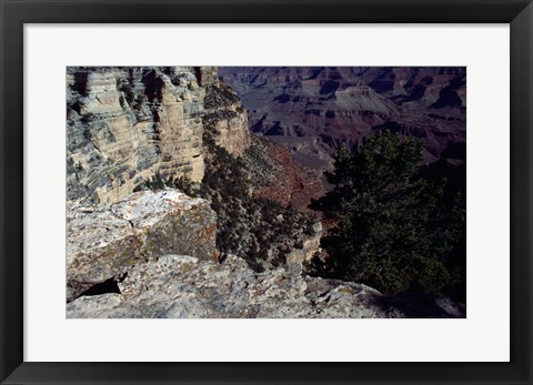 Framed Looking Down Into the Grand Canyon Print