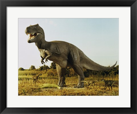 Framed Tyrannosaur Stealing The Kill Thescelosaur From Dromeosaurs Print