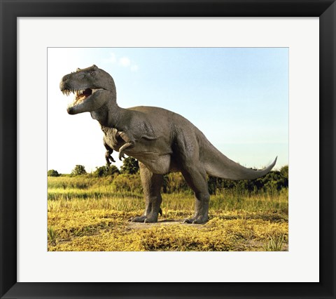 Framed Close-up of a tyrannosaurus rex standing in a field Print