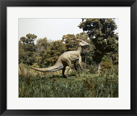 Framed Side profile of a parasaurolophus walking in a forest Print