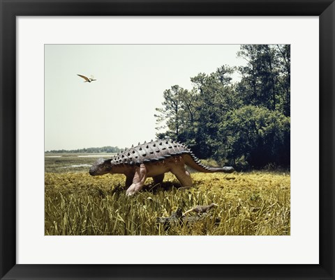 Framed Ankylosaur walking in a field and a pteranodon flying in the sky Print