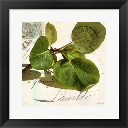Framed Apple Leaf Print