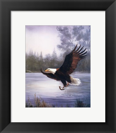 Framed Eagle Fishing Print