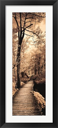 Framed Quiet Stroll I Print