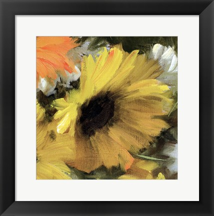 Framed Sunflower Square II Print