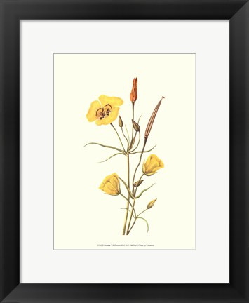 Framed Delicate Wildflowers III Print