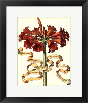 Framed Ribbon Florals I Print