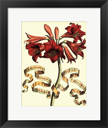 Framed Ribbon Florals II Print