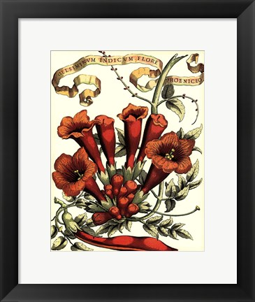 Framed Ribbon Florals IV Print