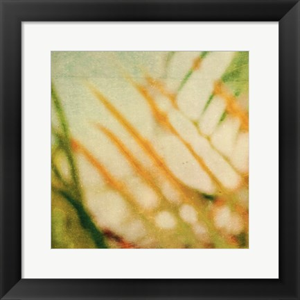 Framed Tropical Texture I Print