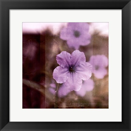 Framed Purple Tranquility II Print