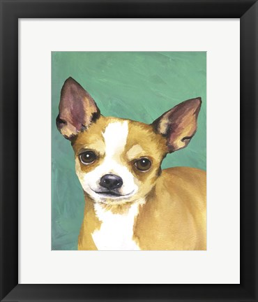 Framed Dog Portrait-Chihuahua Print