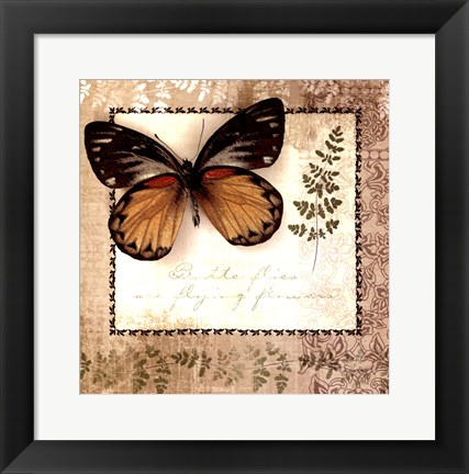 Framed Butterfly Notes V Print