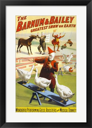 Framed Barnum & Bailey Performing Geese, Roosters and Musical Donkey Print