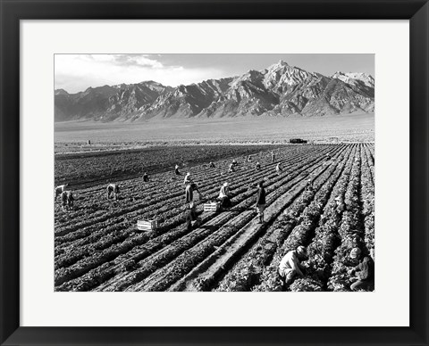 Framed Farm Workers and Mt. Williamson Print