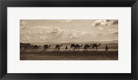 Framed Egyptian Camel Transport Print