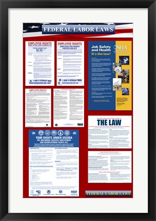 Framed Federal Labor Laws 2012 Print